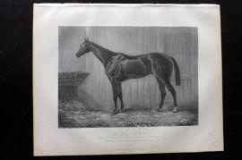 Miles C1890 Antique Horse Print. Blue Gown, Winner at Epsom & Ascot, 1868